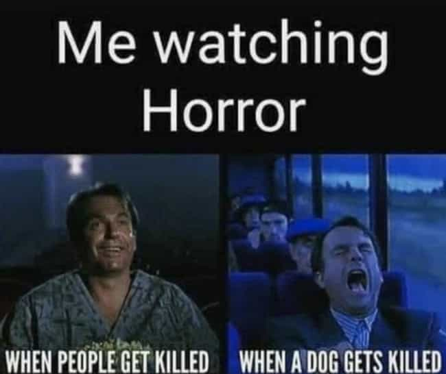 memes humor dark horror hilarious sense super funny understand laugh instagram every dog