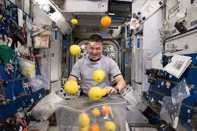 Fresh Fruit Is Sometimes... is listed (or ranked) 4 on the list Weird Details About Astronauts' Everyday Lives In Space