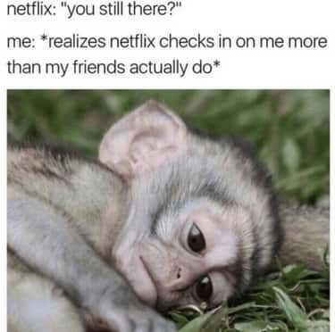 Real Friends Can't Compete is listed (or ranked) 1 on the list Hilariously Depressing Memes For When Netflix Asks If You're Still Watching