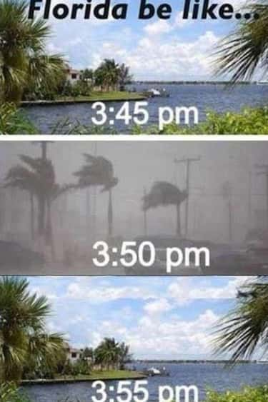 The Weather Can Change At The  is listed (or ranked) 1 on the list The 20 Most Florida Memes On The Internet