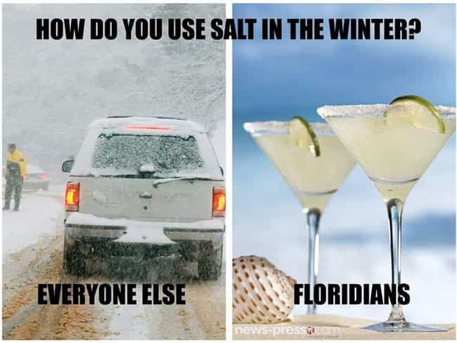 Gloating About Their Winters I... is listed (or ranked) 4 on the list The 20 Most Florida Memes On The Internet