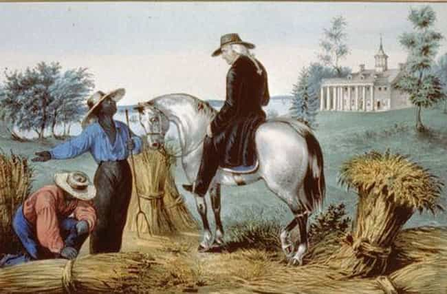 Washington Bought Teeth From H... is listed (or ranked) 4 on the list What It Was Like To Be A Slave At George Washington's Mount Vernon