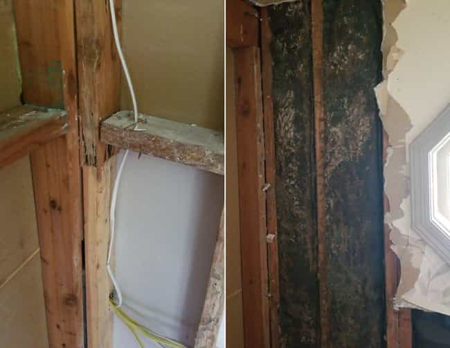 The Seller Didn't Disclose Ter... is listed (or ranked) 1 on the list People On Reddit Share The Most Horrifying Termite Damage In Their Homes And Yards
