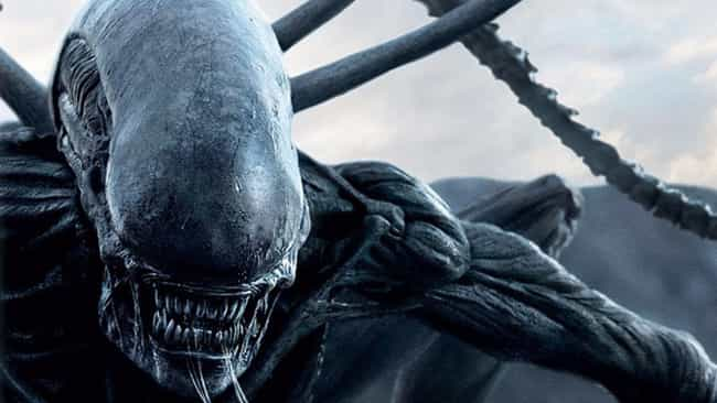 The Xenomorphs Are A Nat... is listed (or ranked) 4 on the list 15 Fan Theories About The 'Alien' Franchise
