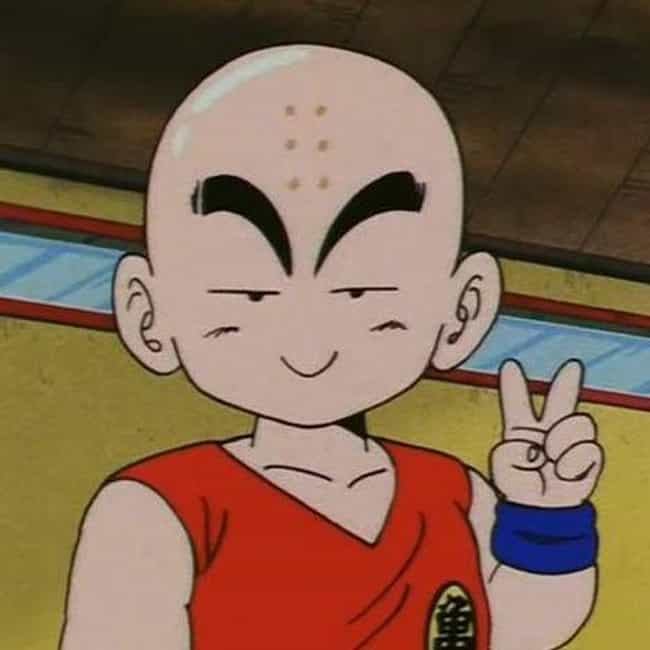 The Best Krillin Quotes