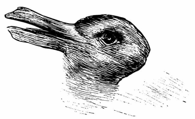 Do You See A Rabbit Or A... is listed (or ranked) 7 on the list What You See In These Images Reveals A Lot About You