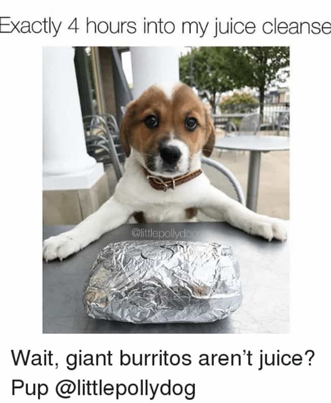 But If You Squeeze The Burrito... is listed (or ranked) 2 on the list The 20 Best Memes About Juice Cleanses