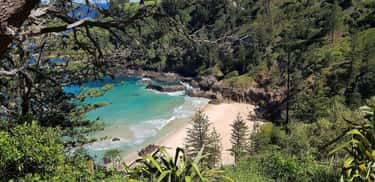 On Arrival, Convicts Had To Ca is listed (or ranked) 2 on the list 12 Crazy Facts About Norfolk Island, Australia's Most Notorious Prison Colony