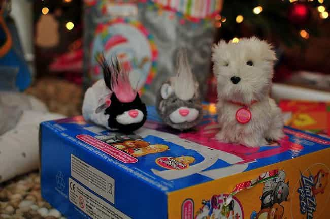 2009: Zhu Zhu Pets is listed (or ranked) 4 on the list The Most Sought-After Christmas Toy Every Year Since 2000, Ranked By Ridiculousness