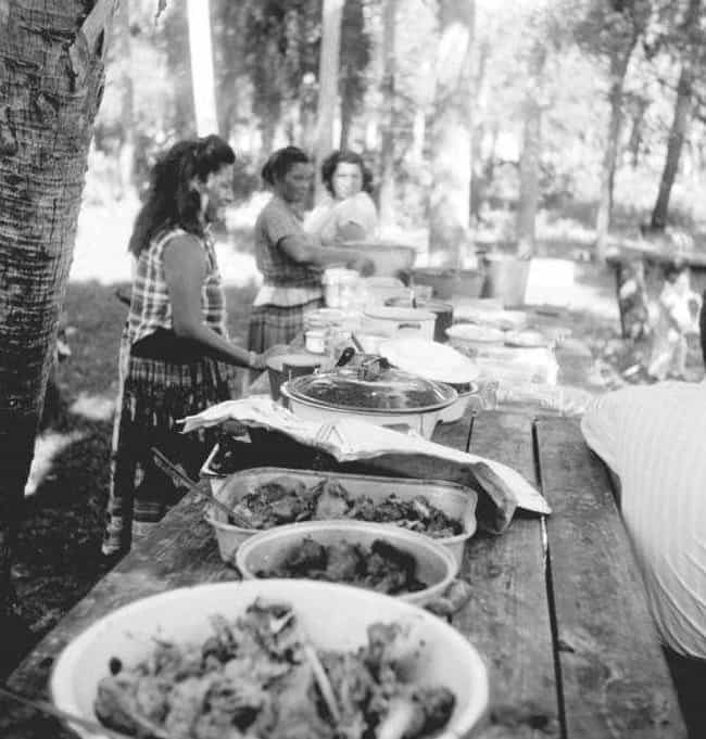 A Florida Mangrove Thanksgivin... is listed (or ranked) 2 on the list Pictures Of Thanksgiving Over The Years