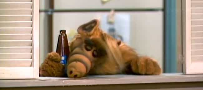 There Was Controversy Over ALF... is listed (or ranked) 4 on the list 'ALF' Is A Bizarre Fever Dream Of An '80s TV Show That's Way Darker Than You Remember