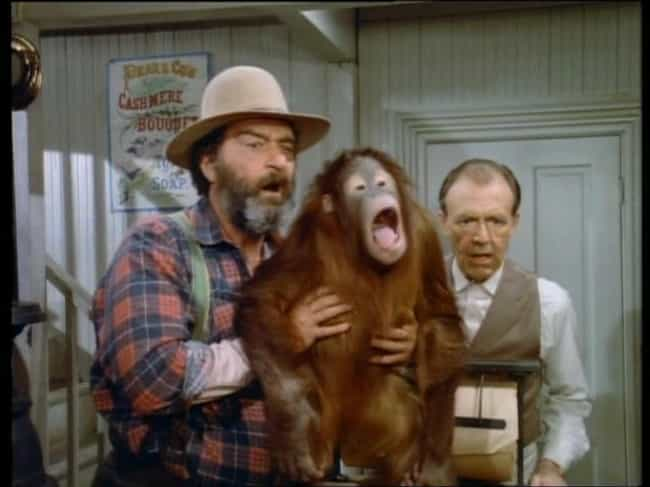 Mr. Edwards Adopts An Oranguta... is listed (or ranked) 2 on the list The Final Season Of 'Little House On The Prairie' Was A Descent Into Total Weirdness