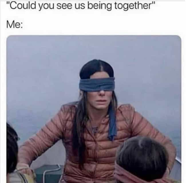 The New Netflix Horror Film 'Bird Box' Isn't Bad – But The Memes Are Even Better