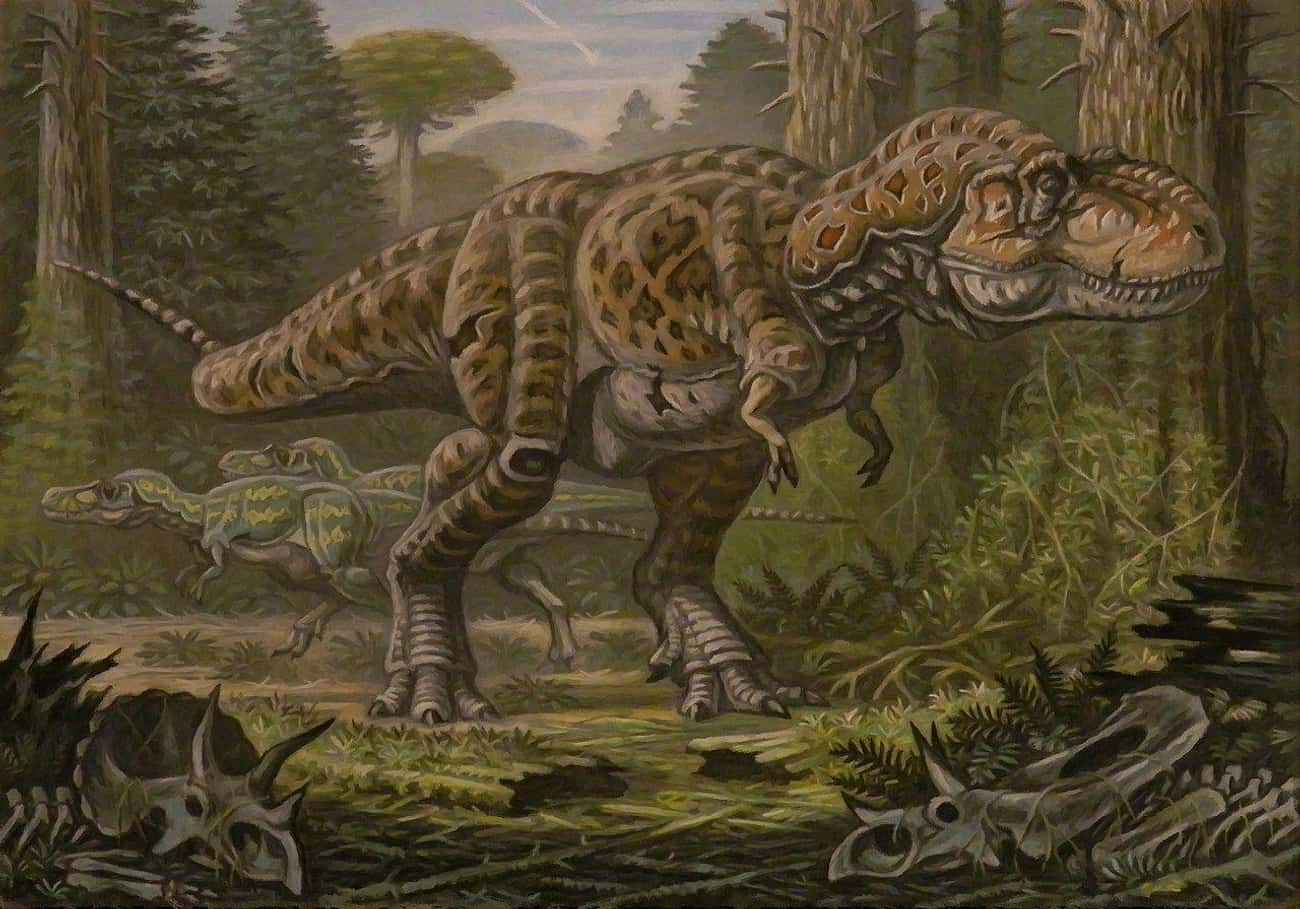 The Time Between The Existence Of Stegosaurus And T-Rex Is Longer Than The Span Separating Humans And Dinosaurs