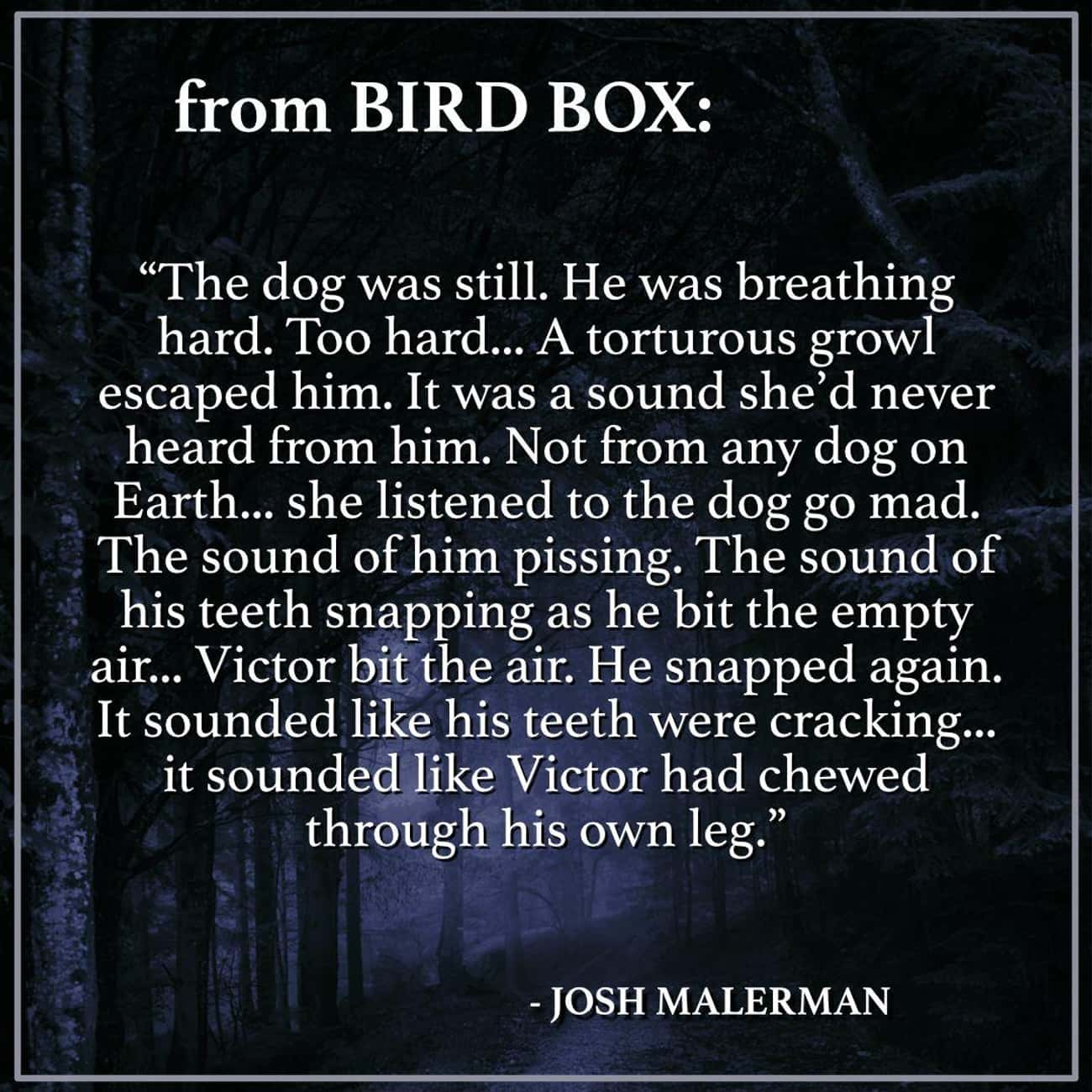 A Dog Succumbs To The Creature is listed (or ranked) 3 on the list Things From The 'Bird Box' Book That Were Too Intense For The Screen