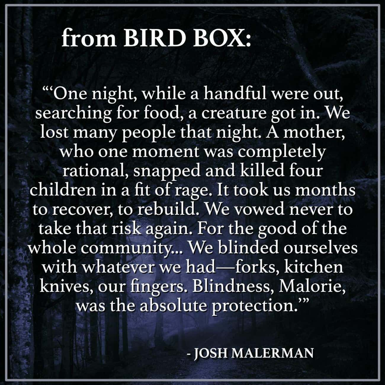 The School For The Blind Has A is listed (or ranked) 4 on the list Things From The 'Bird Box' Book That Were Too Intense For The Screen