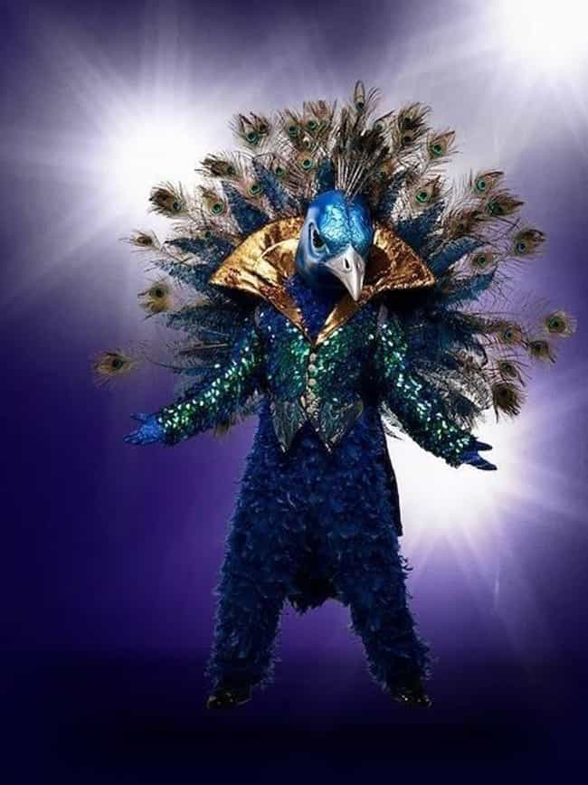 Peacock is listed (or ranked) 2 on the list All The Clues For The Masked Singer Competitors