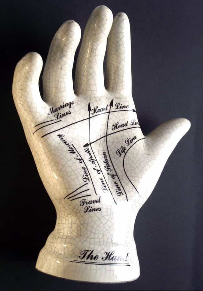 All The Different Lines On Your Hands And What They Mean