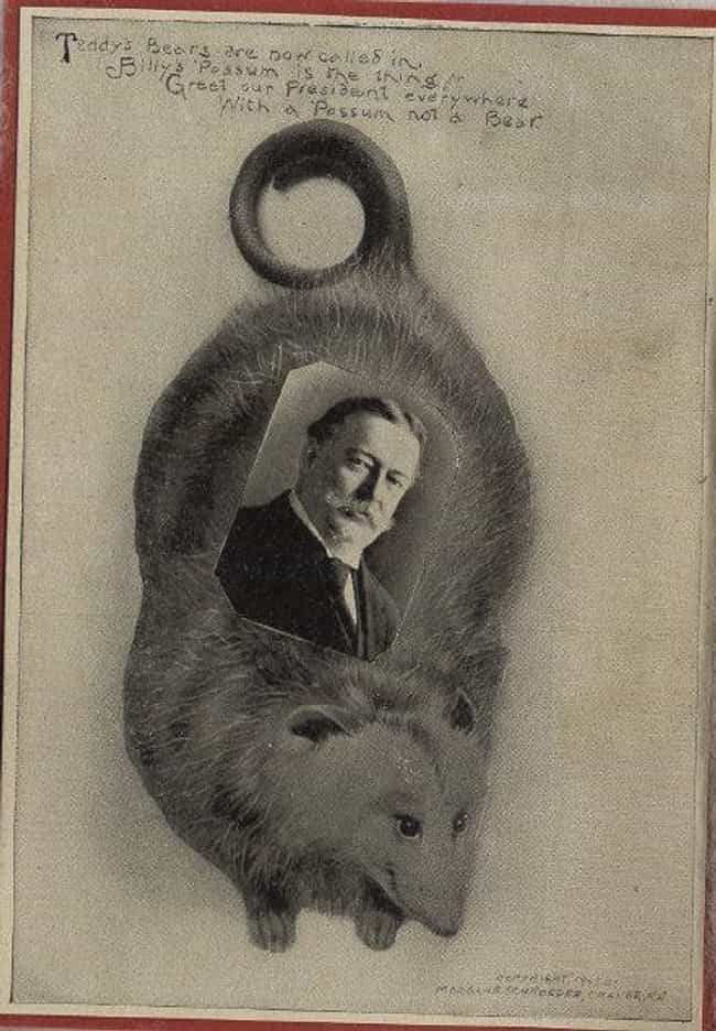 A Georgia Toy Company Began Ma... is listed (or ranked) 3 on the list Jealous Of The Teddy Bear, President Taft Tried To Make Billy Possum Happen