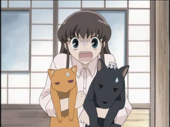 The Sohma Family - Fruit... is listed (or ranked) 4 on the list 15 Anime Characters Who Can Turn Into Animals