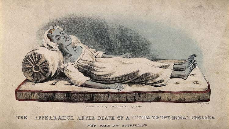 The First Reported Case Tied To The Cholera Epidemic Arrived In England In 1831