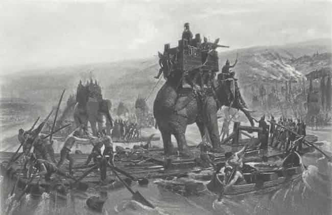 What About Those Elephants? is listed (or ranked) 3 on the list Everything You Need To Know About The Golden Company On Game Of Thrones