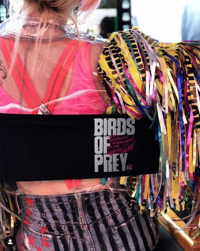 The Film's Official Logo Debut... is listed (or ranked) 2 on the list Here Is Everything We Know About DC's Second Harley Quinn Movie, 'Birds Of Prey'