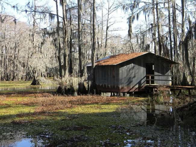 The Ghostly Residents Of Devil... is listed (or ranked) 4 on the list Creepy Legends From The Swamps Of Louisiana