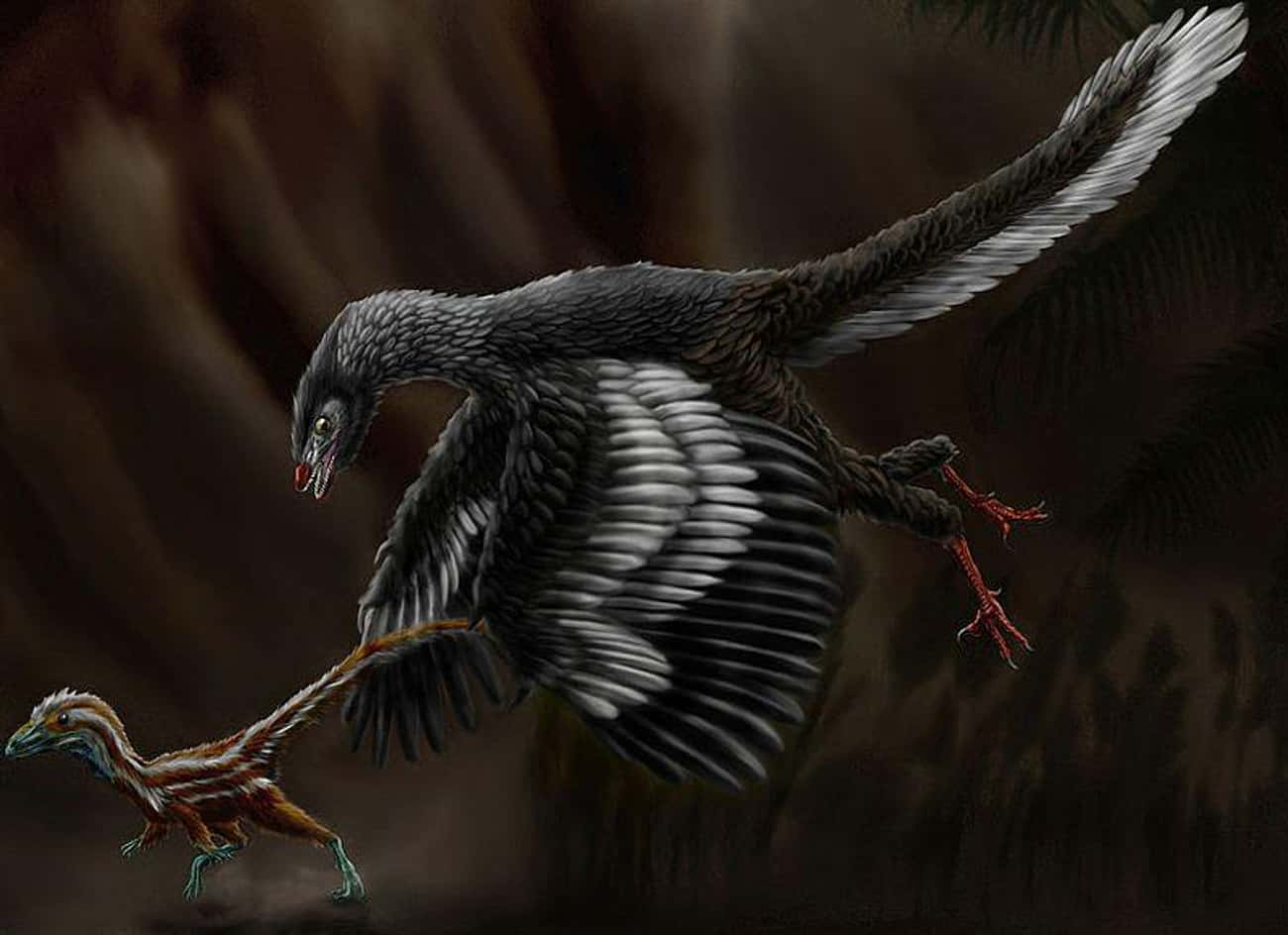 The Archaeopteryx's Anatomy Su is listed (or ranked) 3 on the list What Modern Scientists Think Dinosaurs Really Looked Like