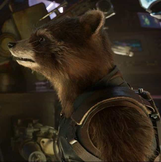 Taserface is listed (or ranked) 3 on the list The Best Rocket Raccoon Quotes