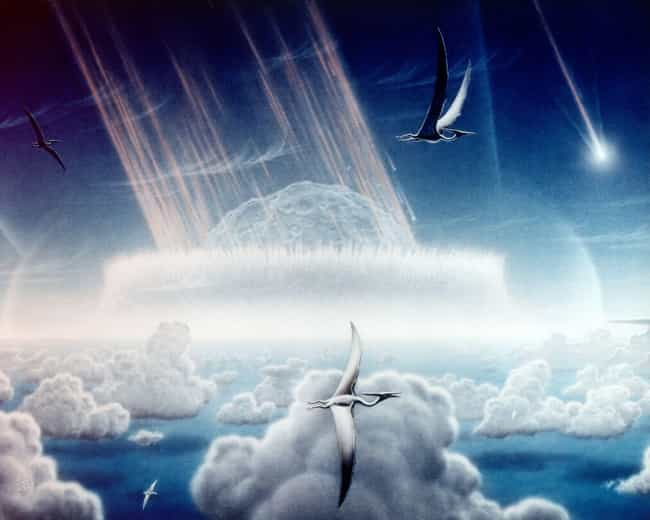 Winds Shredded The Surro... is listed (or ranked) 4 on the list A Beat-By-Beat Breakdown Of The Asteroid Impact That Killed The Dinosaurs