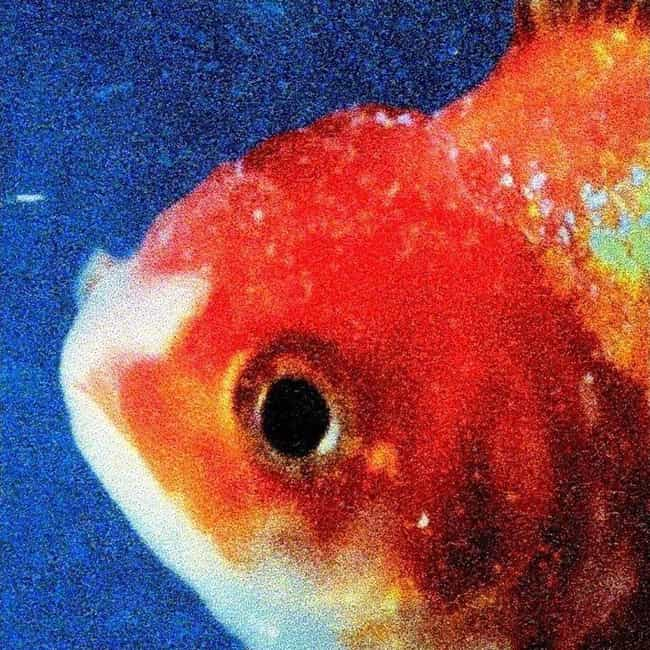 Big Fish Theory is listed (or ranked) 1 on the list The Best Vince Staples Albums, Ranked