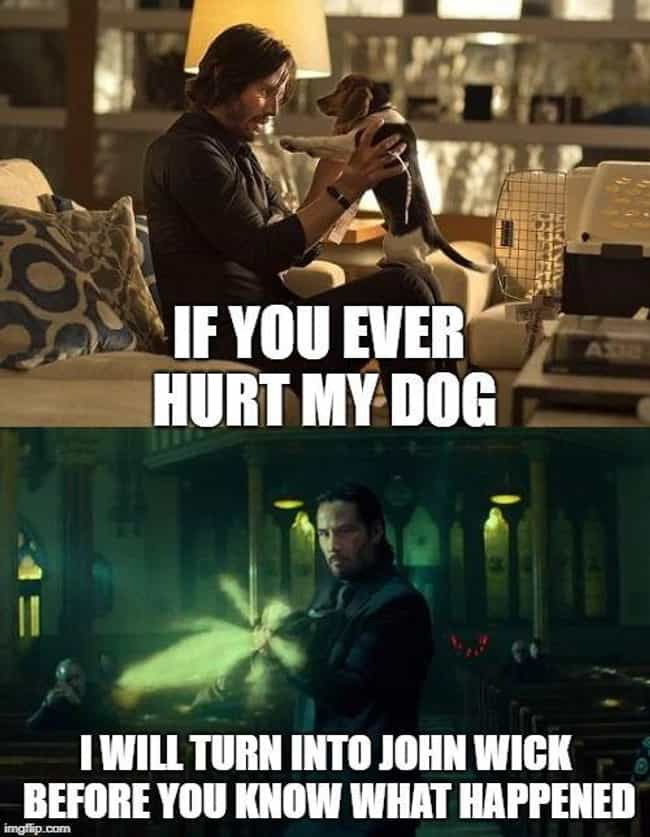 A Simple Warning is listed (or ranked) 3 on the list 15 John Wick Memes Only True Dog Lovers Will Understand