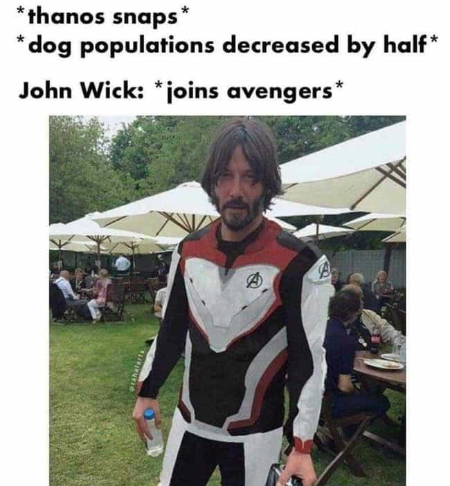 John Wick Snaps Back is listed (or ranked) 1 on the list 15 John Wick Memes Only True Dog Lovers Will Understand