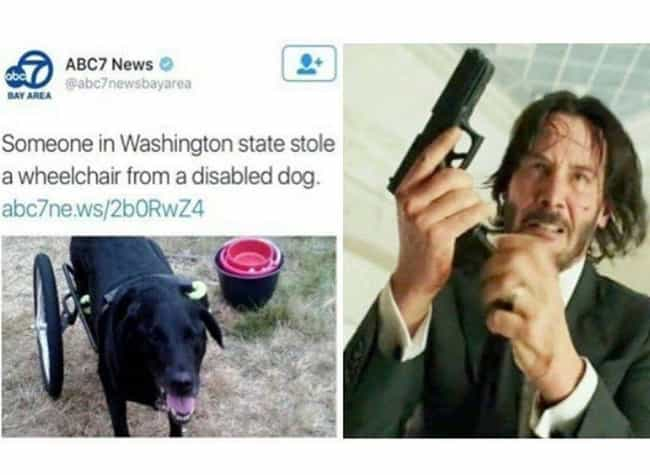 Wheel Of Justice is listed (or ranked) 3 on the list 16 John Wick Memes Only True Dog Lovers Will Understand