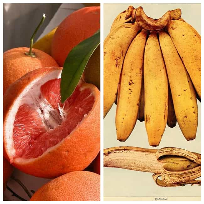 1930s: Grapefruit, Banan... is listed (or ranked) 4 on the list What Health Nuts Ate In Every Decade Since The Turn Of The 20th Century