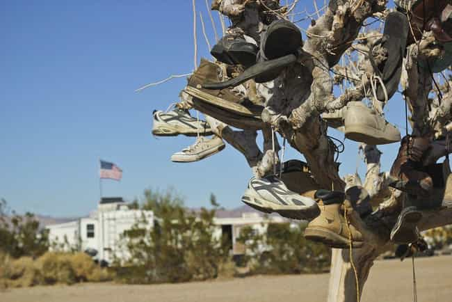 They Don't Use Money To Pay Fo... is listed (or ranked) 1 on the list What It's Actually Like To Live In Slab City