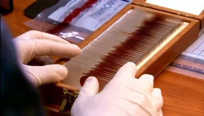 The Blood On Dexter's Slides W... is listed (or ranked) 8 on the list Behind The Scenes Of The 'Dexter' Murder Sequences