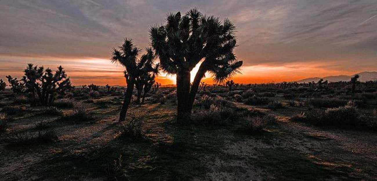 The Mojave Desert Is Home To The Road Ghost Phenomenon
