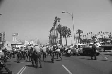 Thompson Was Investigating The Suspicious End Of A Chicano Civil Rights Activist