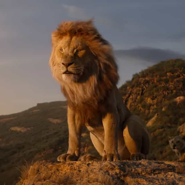 Everything is listed (or ranked) 2 on the list The Best Quotes From 'The Lion King' (2019)