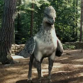 Buckbeak is listed (or ranked) 18 on the list The Greatest Harry Potter Characters, Ranked