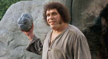 His Acting Instincts Were So G is listed (or ranked) 1 on the list Behind-The-Scenes Stories About André The Giant In 'The Princess Bride'
