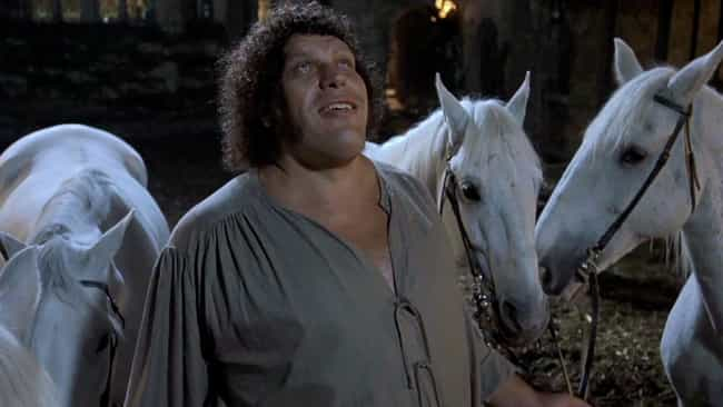 Since English Was His Second L... is listed (or ranked) 3 on the list Behind-The-Scenes Stories About André The Giant In 'The Princess Bride'