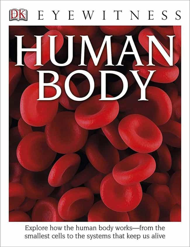 DK Eyewitness Books: Hum... is listed (or ranked) 4 on the list The Best Human Physiology Books