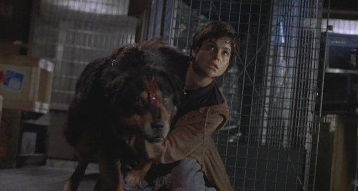 Random 'Man's Best Friend' Is A Charmingly Stupid '90s Horror Movie