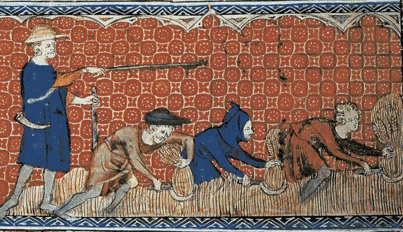 Random Details About Hygiene of Medieval Peasants