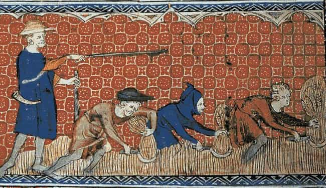 Most Peasants Rarely Bat... is listed (or ranked) 1 on the list What Was Hygiene Like For Medieval Peasants?