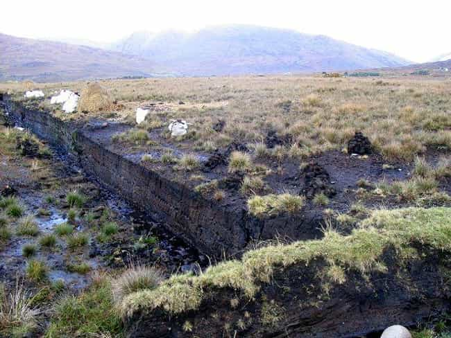 Peat Bogs Formed In Basins Whe... is listed (or ranked) 1 on the list How (And Why) Europe's Mysterious Bog Bodies Were Naturally Mummified