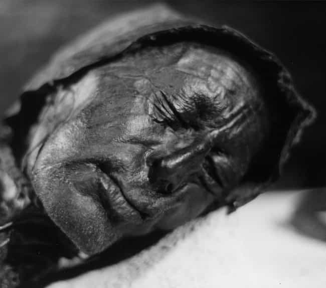 Humic Acid From The Peat Moss ... is listed (or ranked) 4 on the list How (And Why) Europe's Mysterious Bog Bodies Were Naturally Mummified